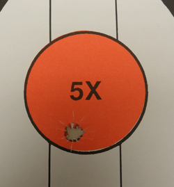 Magnum Research BFR S&W 500 Target