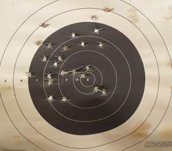Springfield Armory XD 45ACP-Target