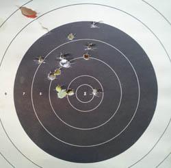 Taurus Judge Target